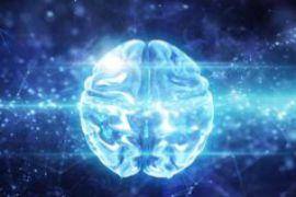 Có thể dùng trí tuệ nhân tạo để duy trì sự sống sau cái chết?